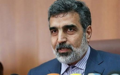 کمالوندی: ورود 38 تن سوخت جدید مورد احتیاج نیروگاه اتمی بوشهر به کشور